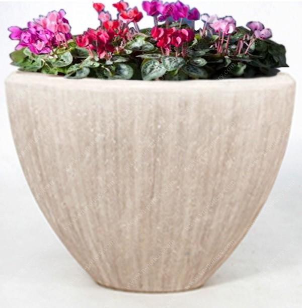 Concrete Pots Planters